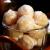 Cara Membuat Bola-bola Pisang Tabur Gula Empuk Enak dan Mudah